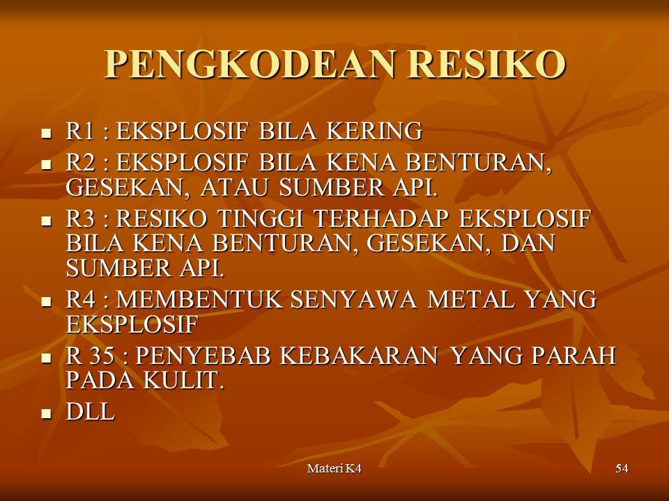 PENGKODEAN RESIKO R1 : EKSPLOSIF BILA KERING