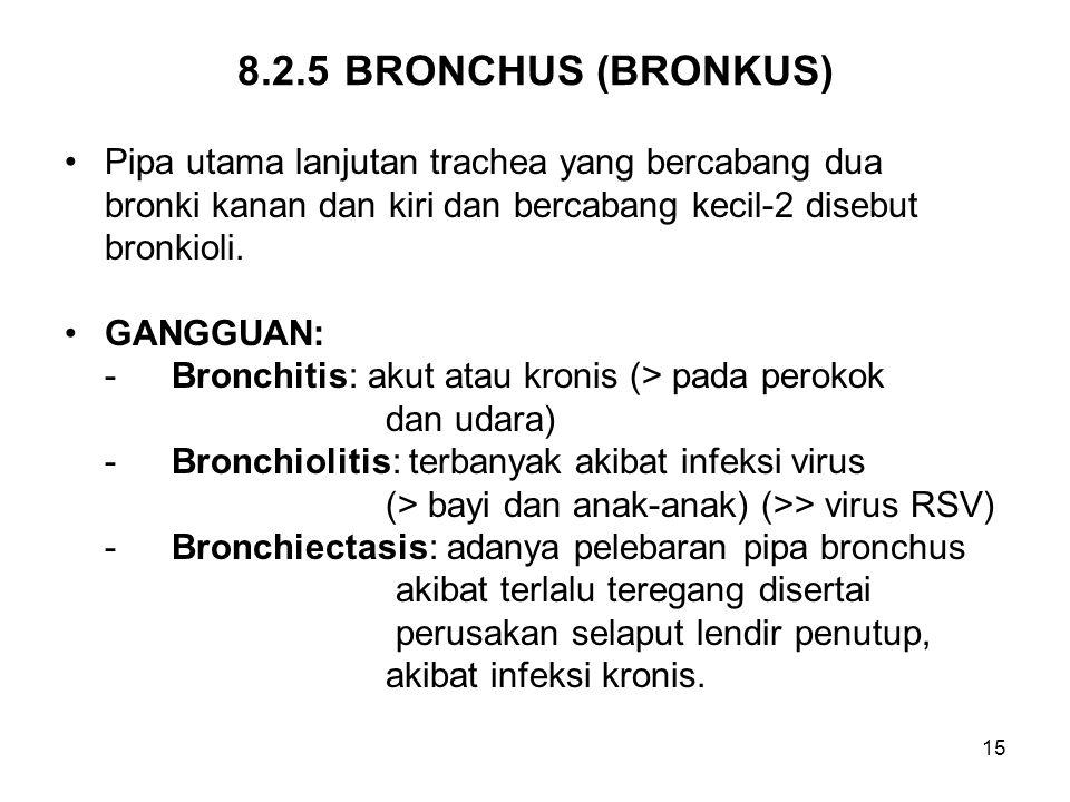 8.2.5 BRONCHUS (BRONKUS) Pipa utama lanjutan trachea yang bercabang dua. bronki kanan dan kiri dan bercabang kecil-2 disebut.