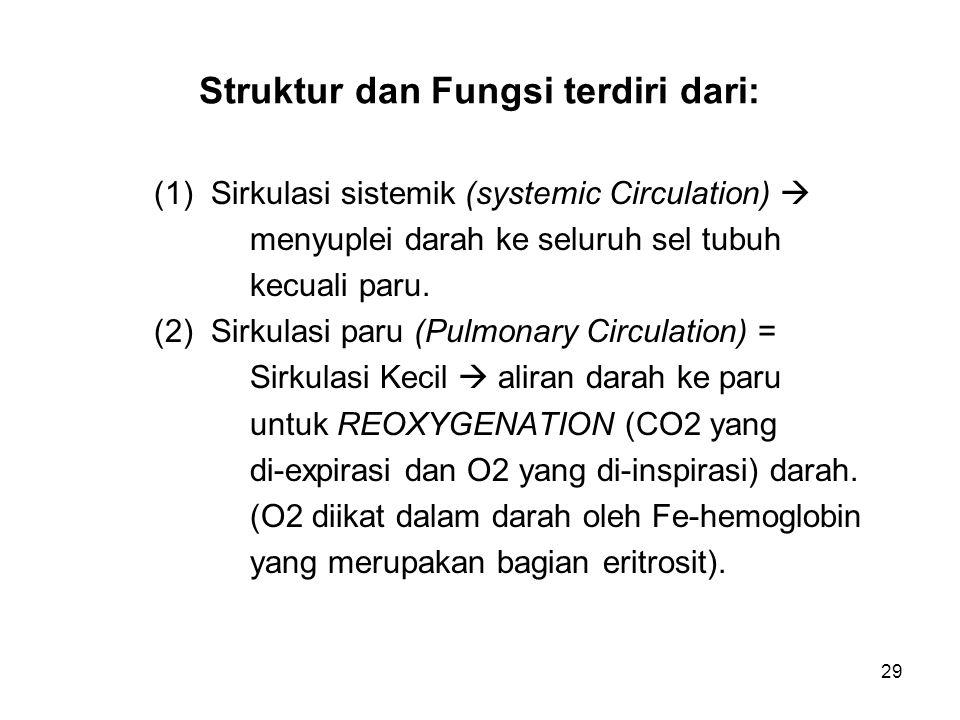 Struktur dan Fungsi terdiri dari: