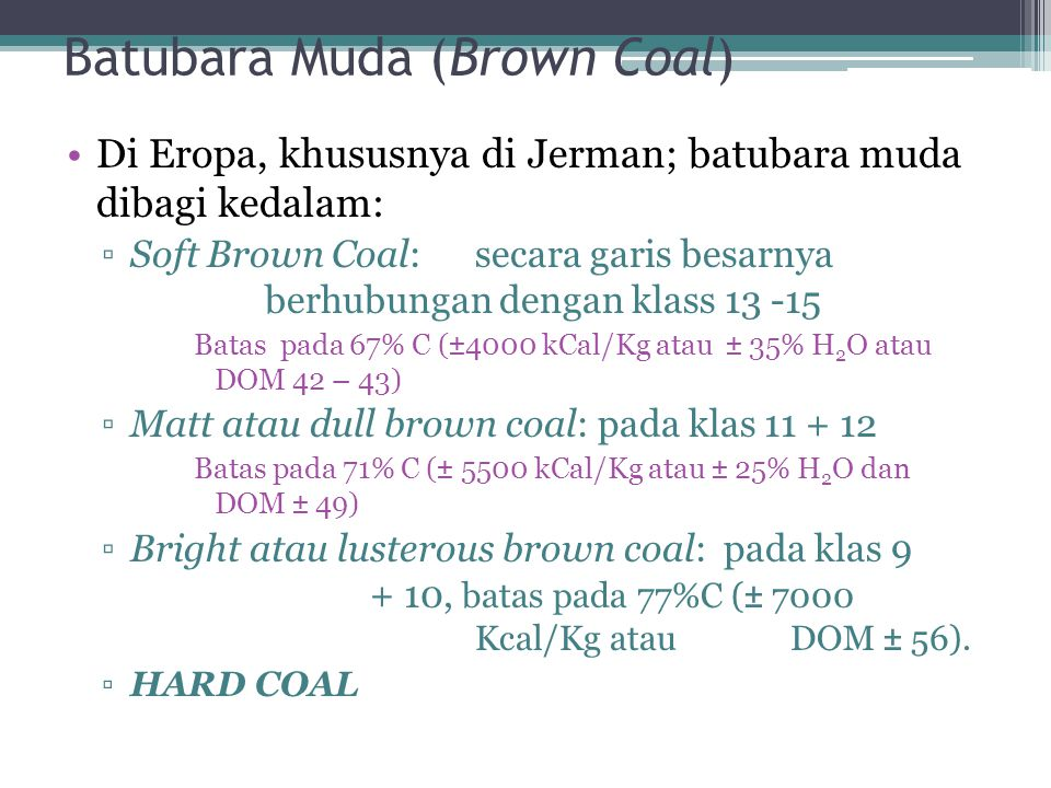 Batubara Muda (Brown Coal)