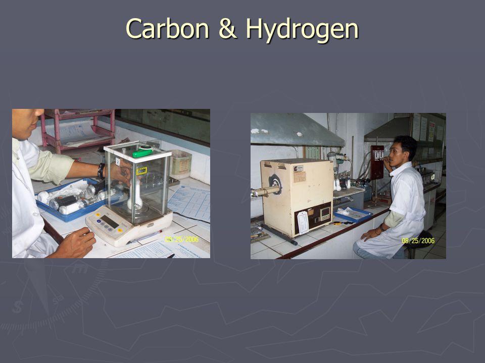 Carbon & Hydrogen