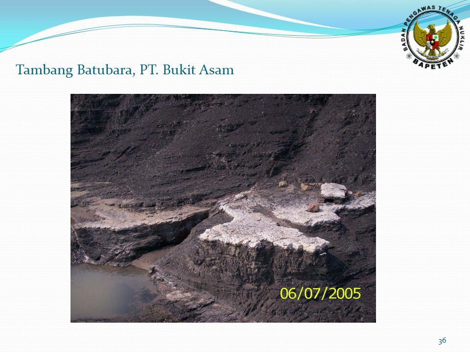 Tambang Batubara, PT. Bukit Asam