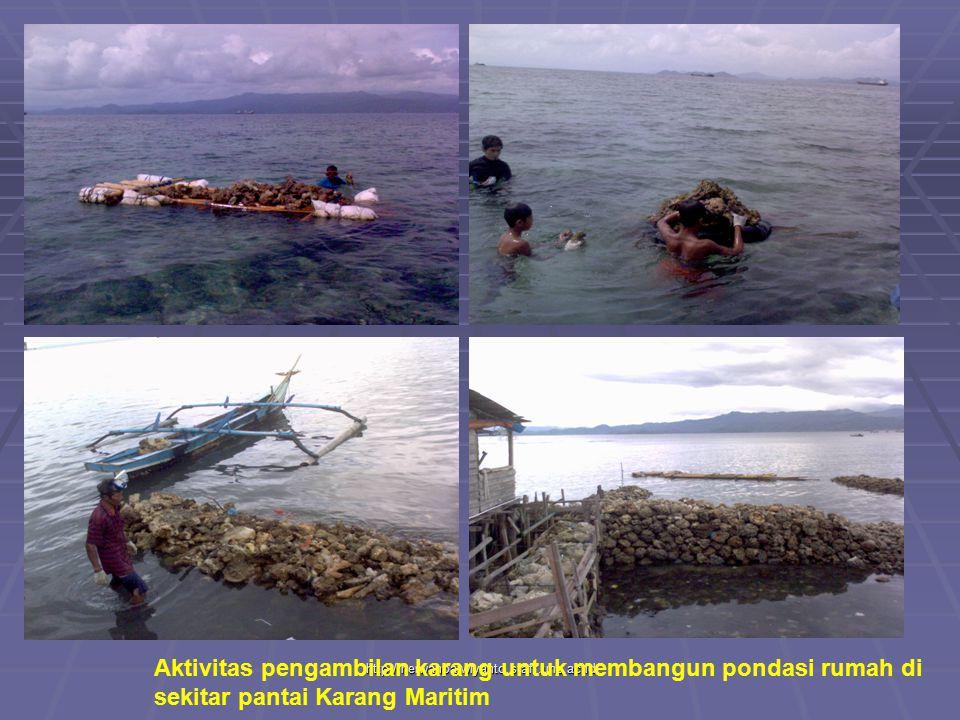Aktivitas pengambilan karang untuk membangun pondasi rumah di sekitar pantai Karang Maritim
