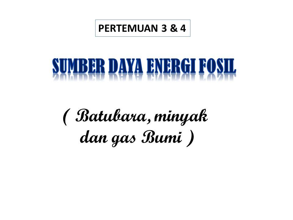 SUMBER DAYA ENERGI FOSIL