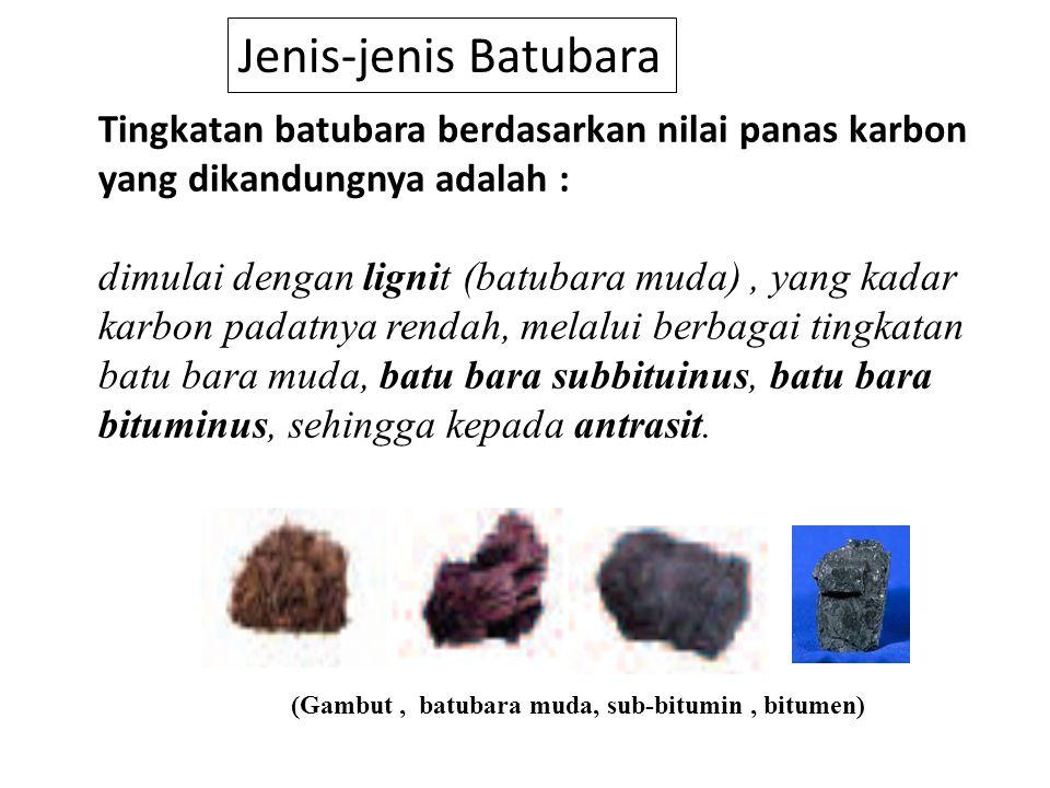 (Gambut , batubara muda, sub-bitumin , bitumen)