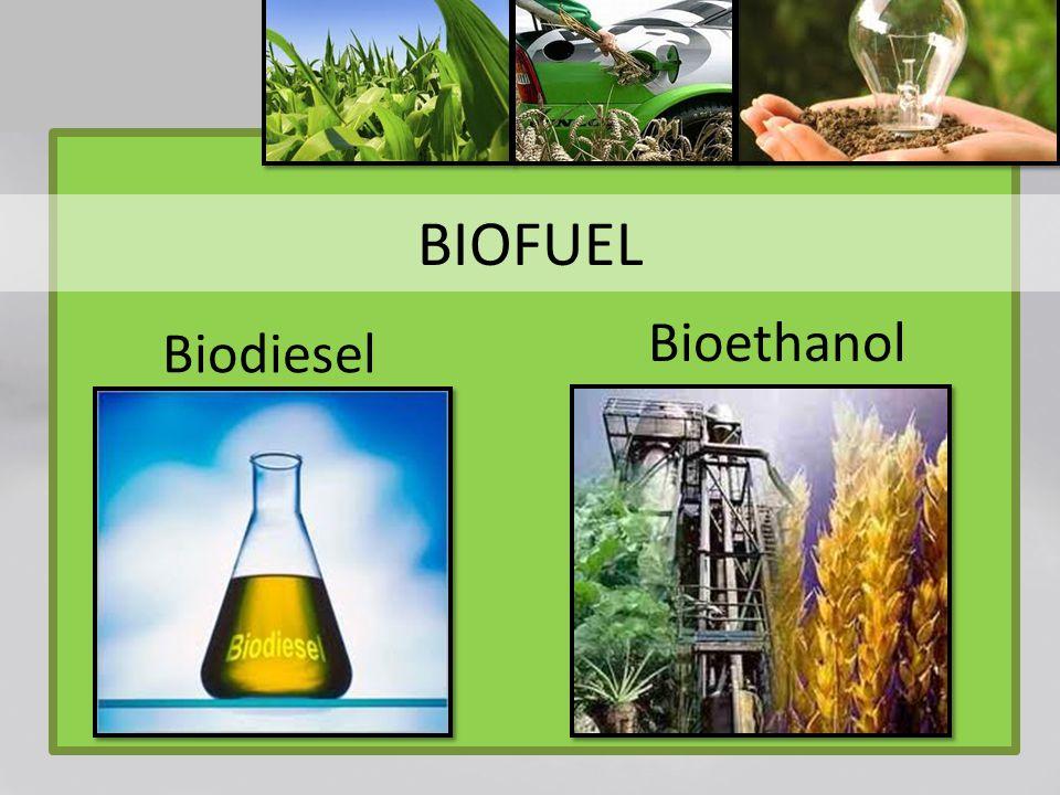 BIOFUEL Bioethanol Biodiesel
