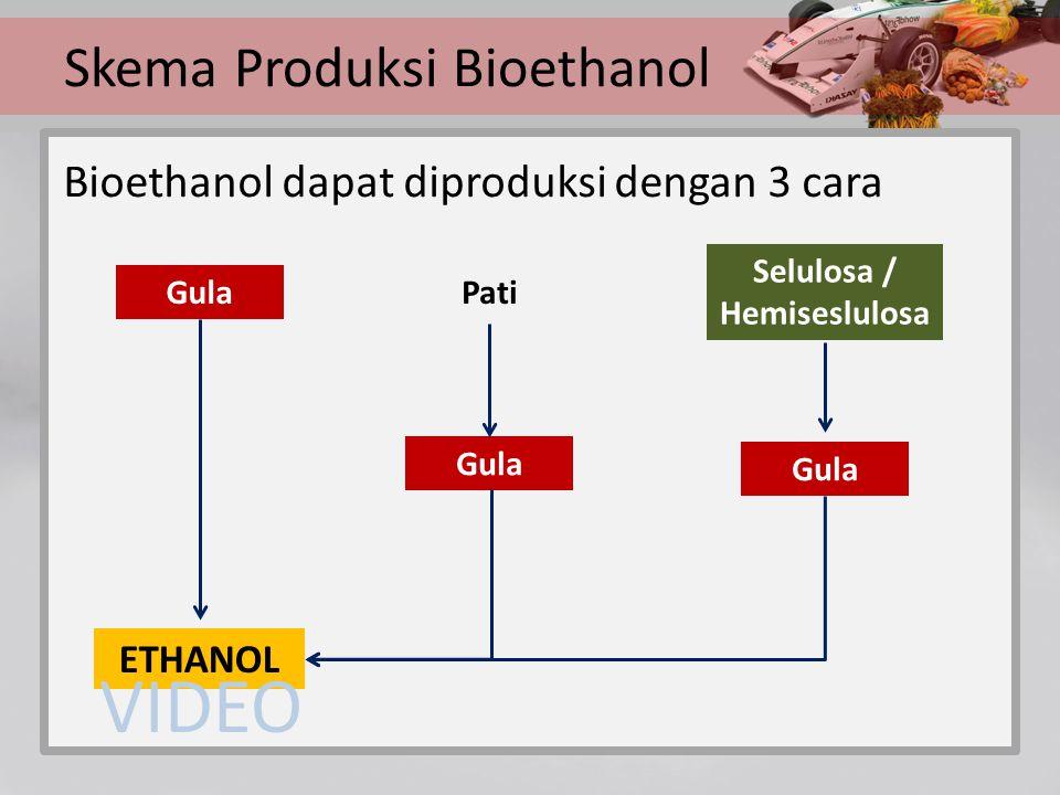 Skema Produksi Bioethanol