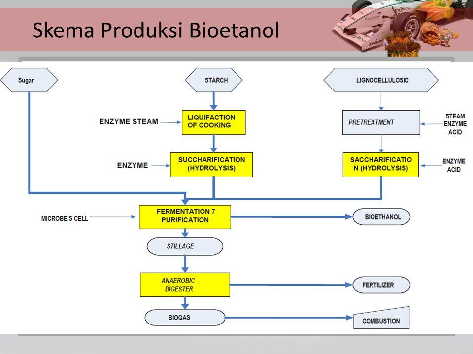 Skema Produksi Bioetanol