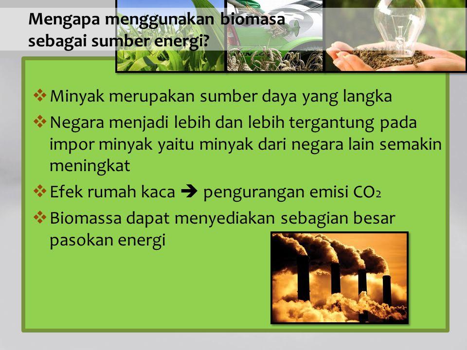 Mengapa menggunakan biomasa sebagai sumber energi
