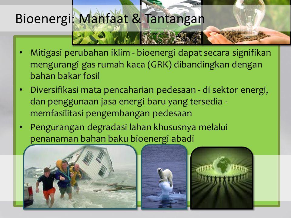 Bioenergi: Manfaat & Tantangan