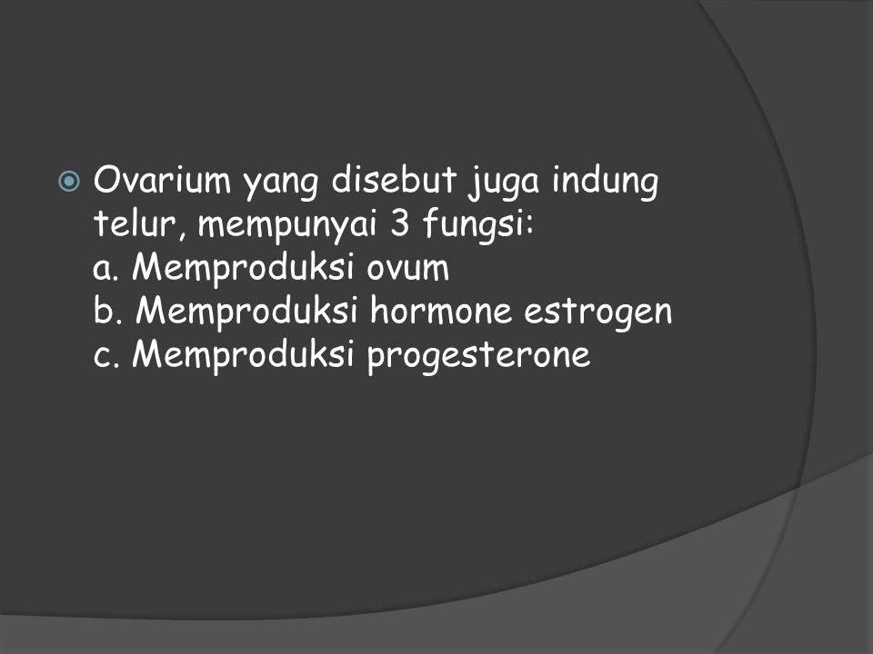 Ovarium yang disebut juga indung telur, mempunyai 3 fungsi: a