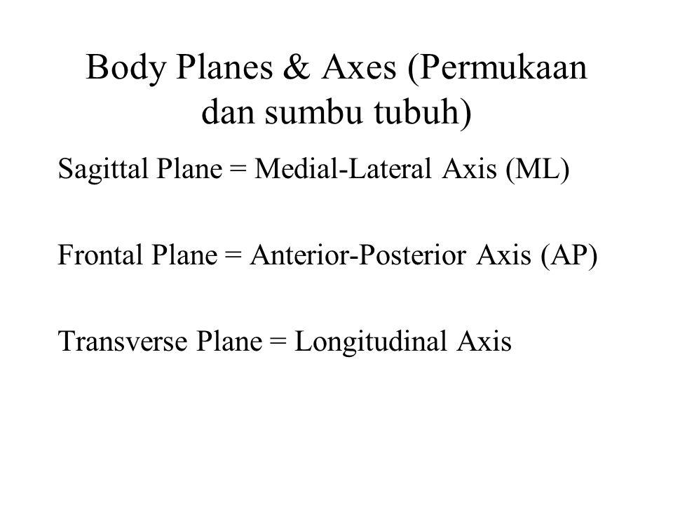 Body Planes & Axes (Permukaan dan sumbu tubuh)