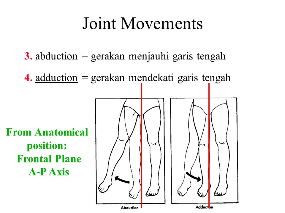 Joint Movements 3. abduction = gerakan menjauhi garis tengah