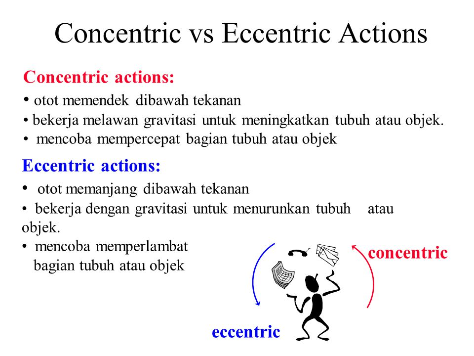 Concentric vs Eccentric Actions