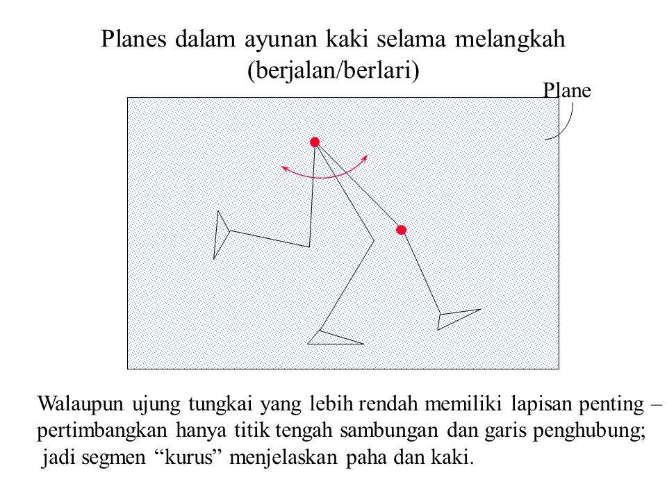 Planes dalam ayunan kaki selama melangkah (berjalan/berlari)