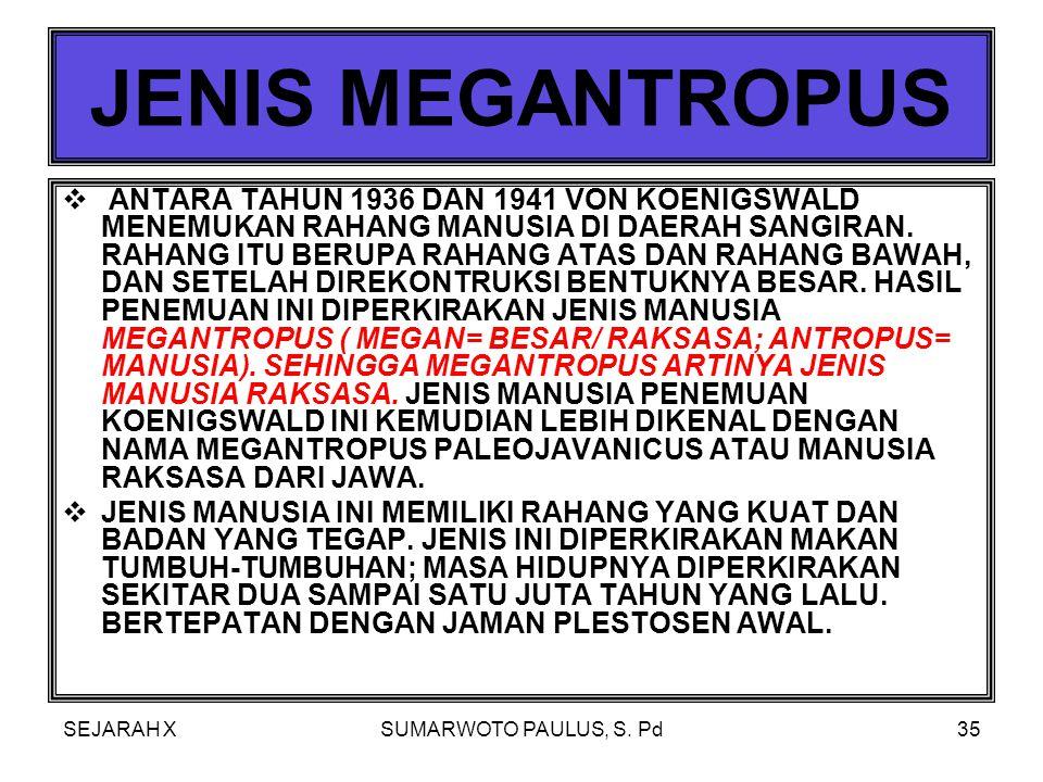 JENIS MEGANTROPUS