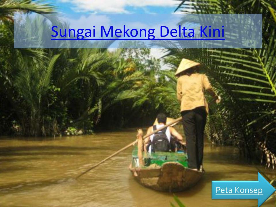 Sungai Mekong Delta Kini