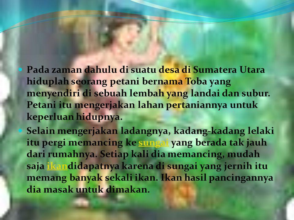 Pada zaman dahulu di suatu desa di Sumatera Utara hiduplah seorang petani bernama Toba yang menyendiri di sebuah lembah yang landai dan subur. Petani itu mengerjakan lahan pertaniannya untuk keperluan hidupnya.