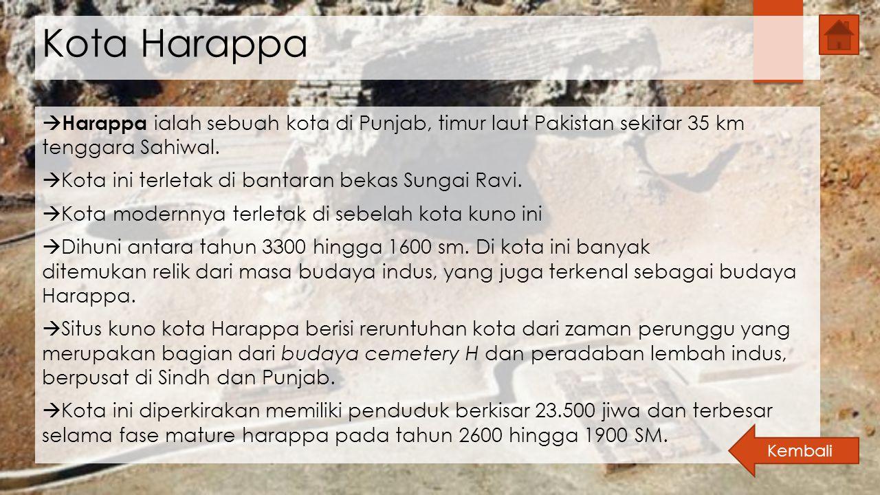 Kota Harappa