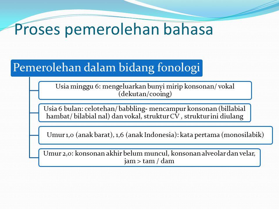 Proses pemerolehan bahasa