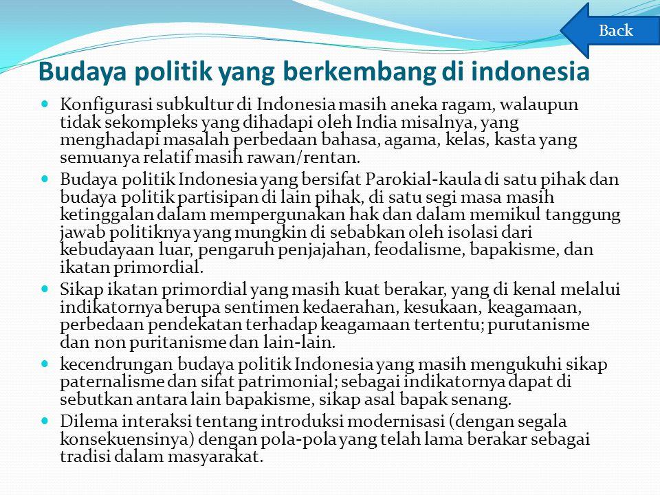 Budaya politik yang berkembang di indonesia