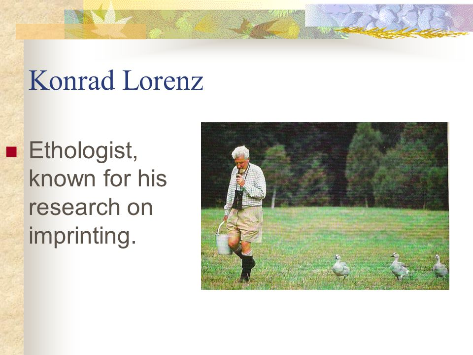 Konrad Lorenz Ethologist, known for his research on imprinting.