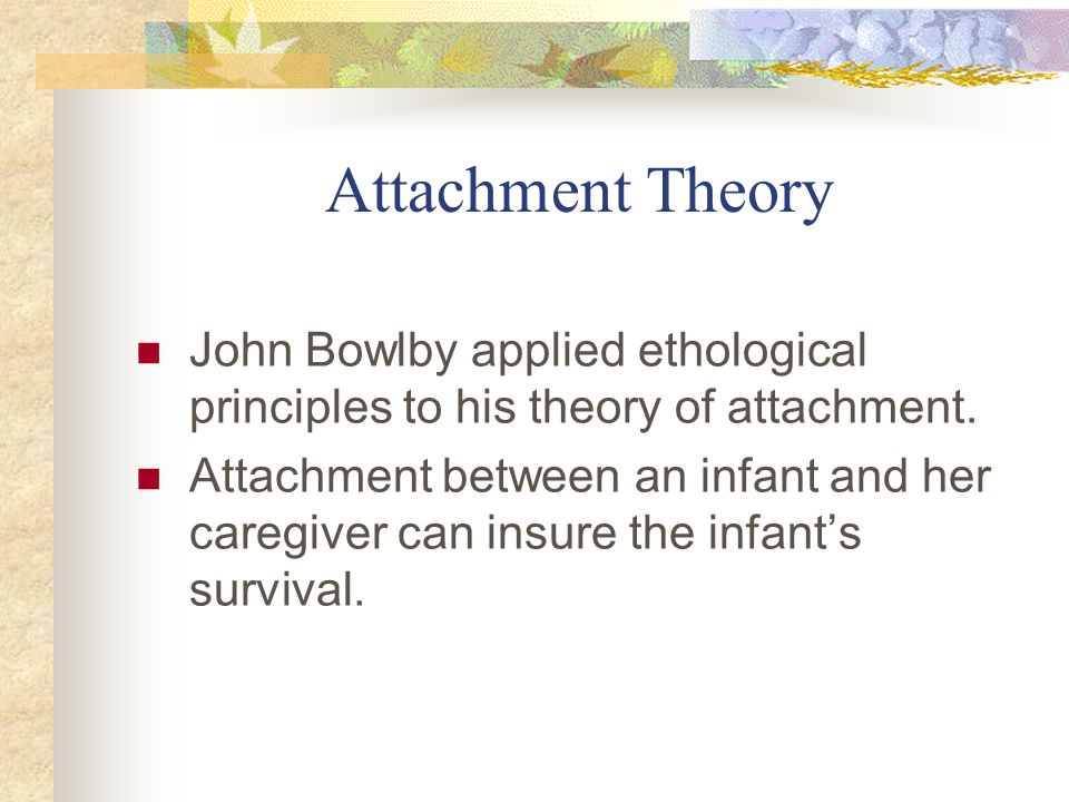 Attachment Theory John Bowlby applied ethological principles to his theory of attachment.