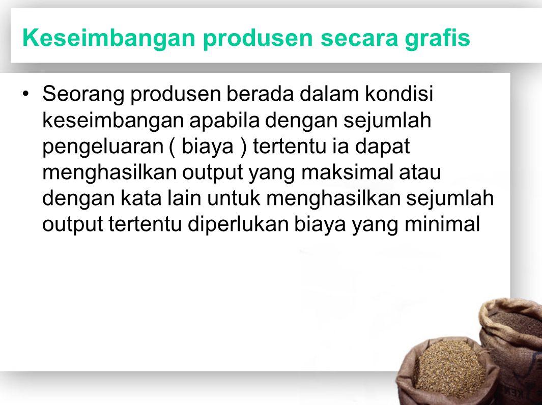 Keseimbangan produsen secara grafis