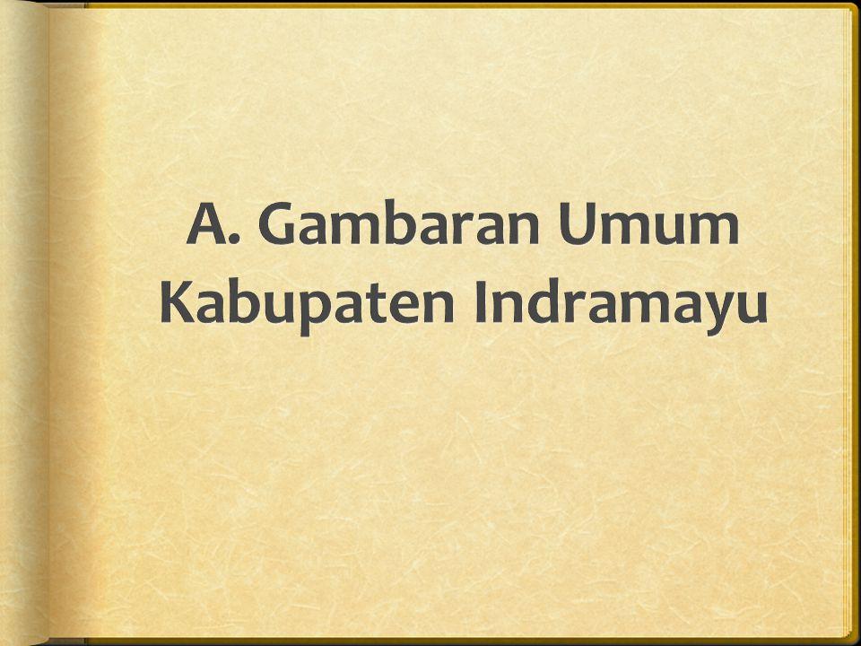 A. Gambaran Umum Kabupaten Indramayu