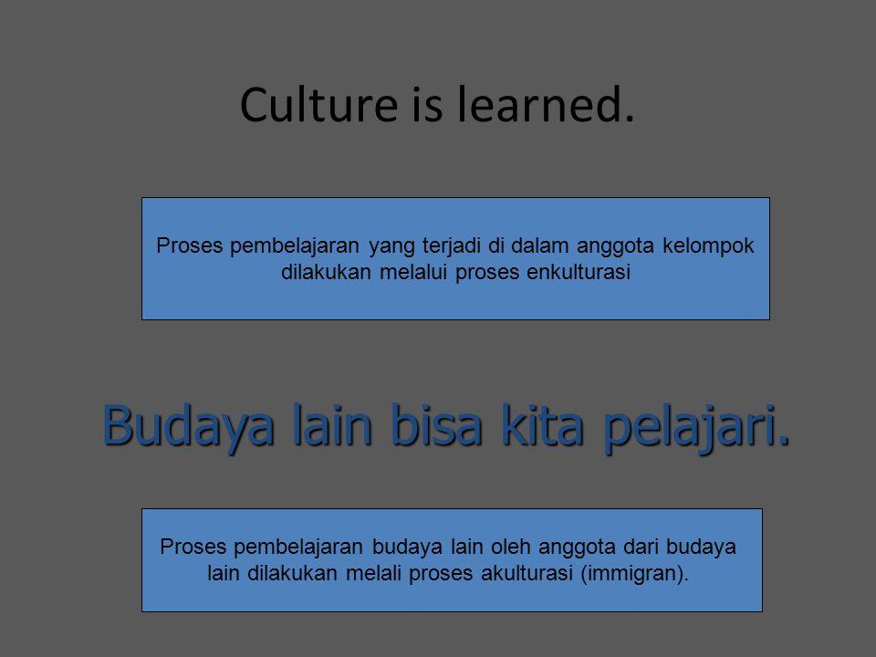 Budaya lain bisa kita pelajari.