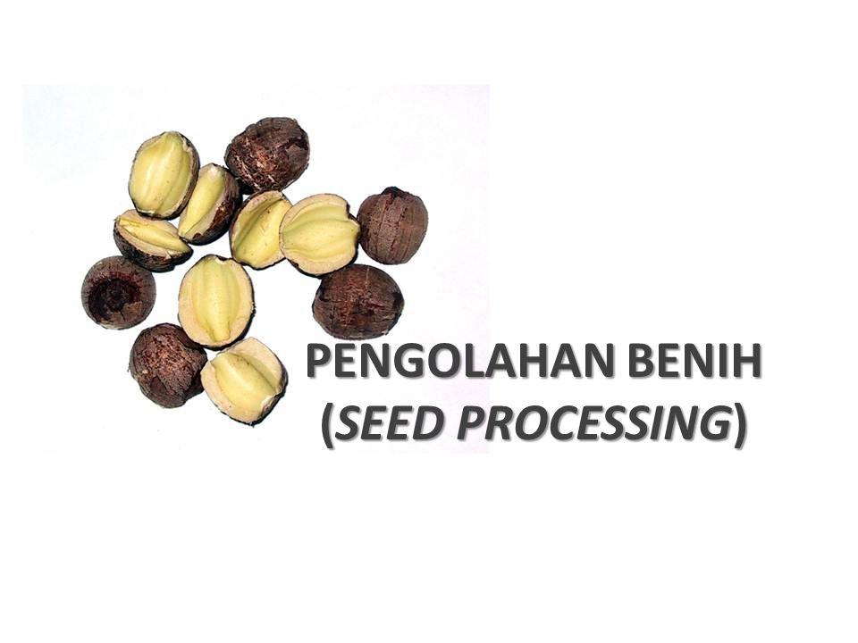 PENGOLAHAN BENIH (SEED PROCESSING)
