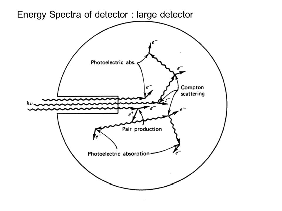 Energy Spectra of detector : large detector