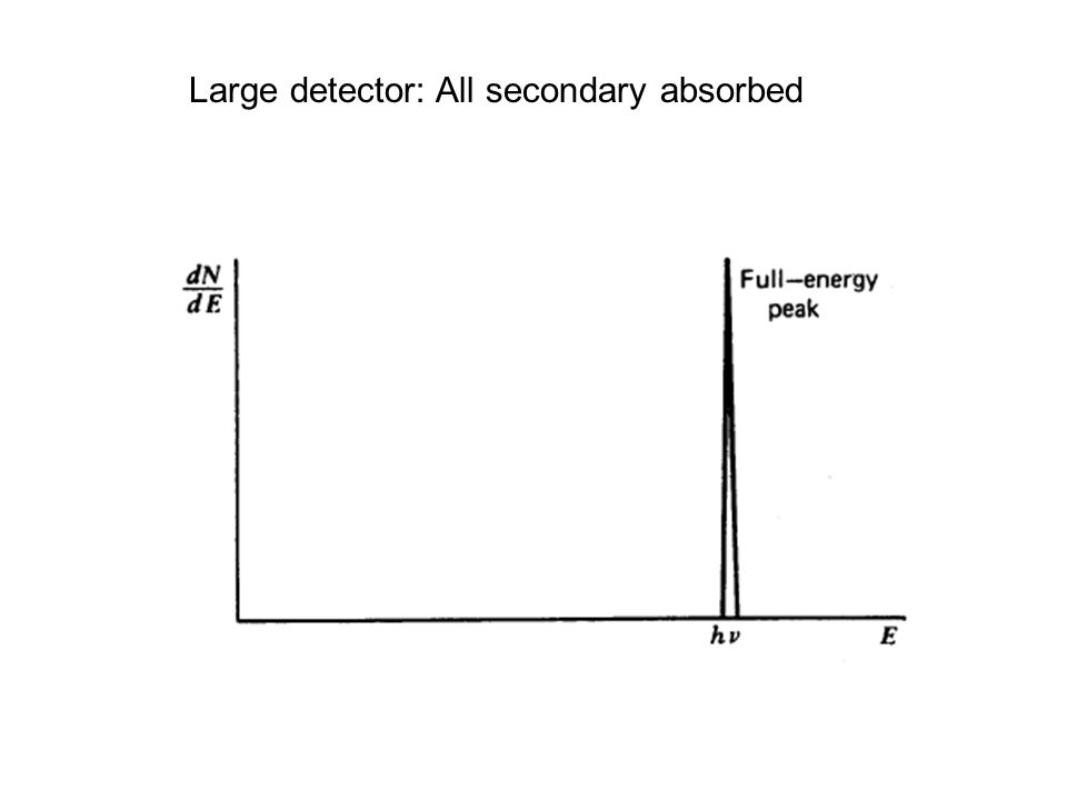 Large detector: All secondary absorbed