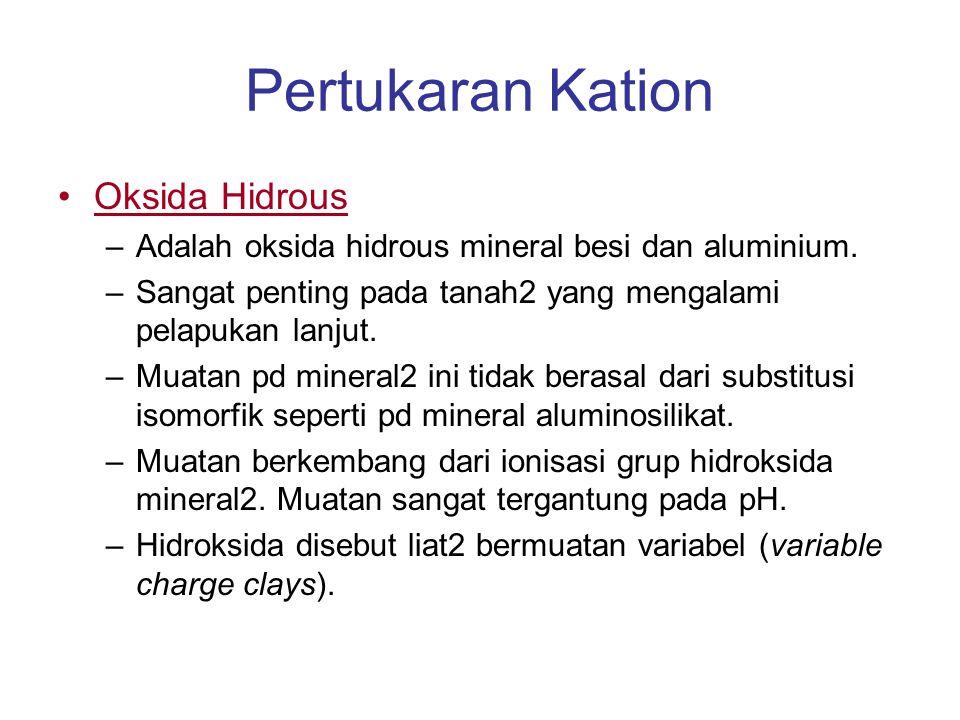 Pertukaran Kation Oksida Hidrous