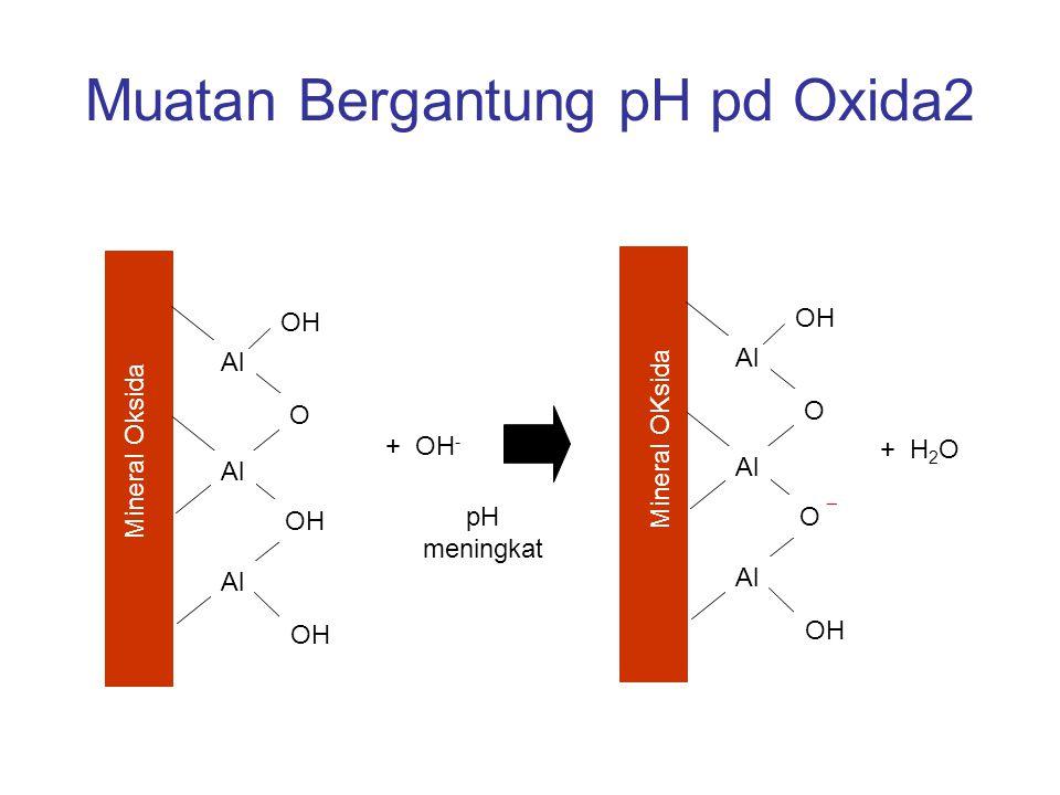 Muatan Bergantung pH pd Oxida2