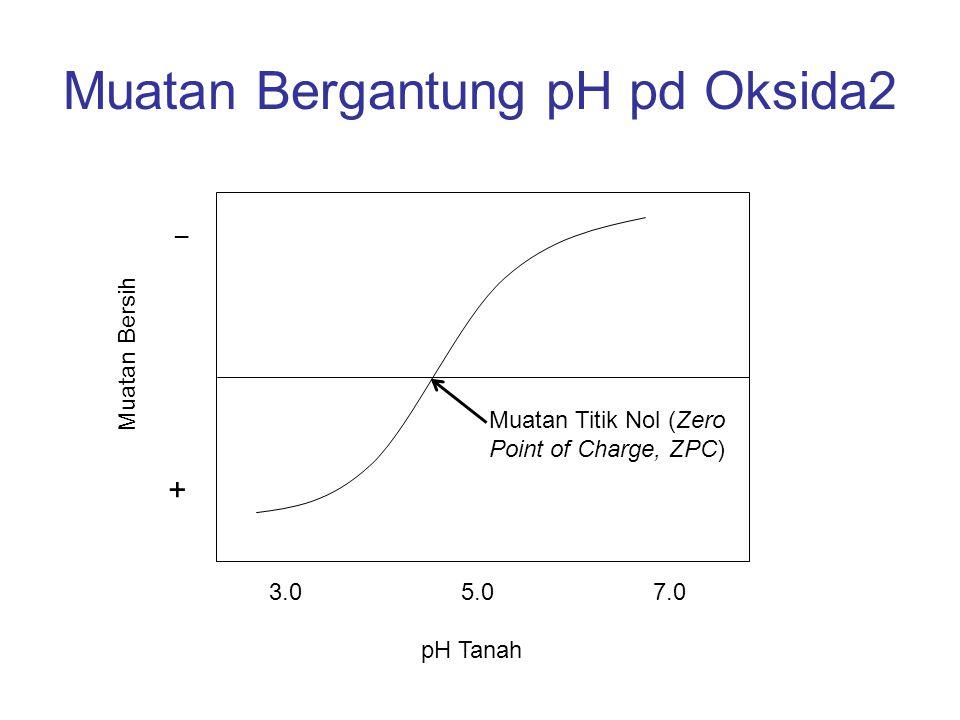 Muatan Bergantung pH pd Oksida2