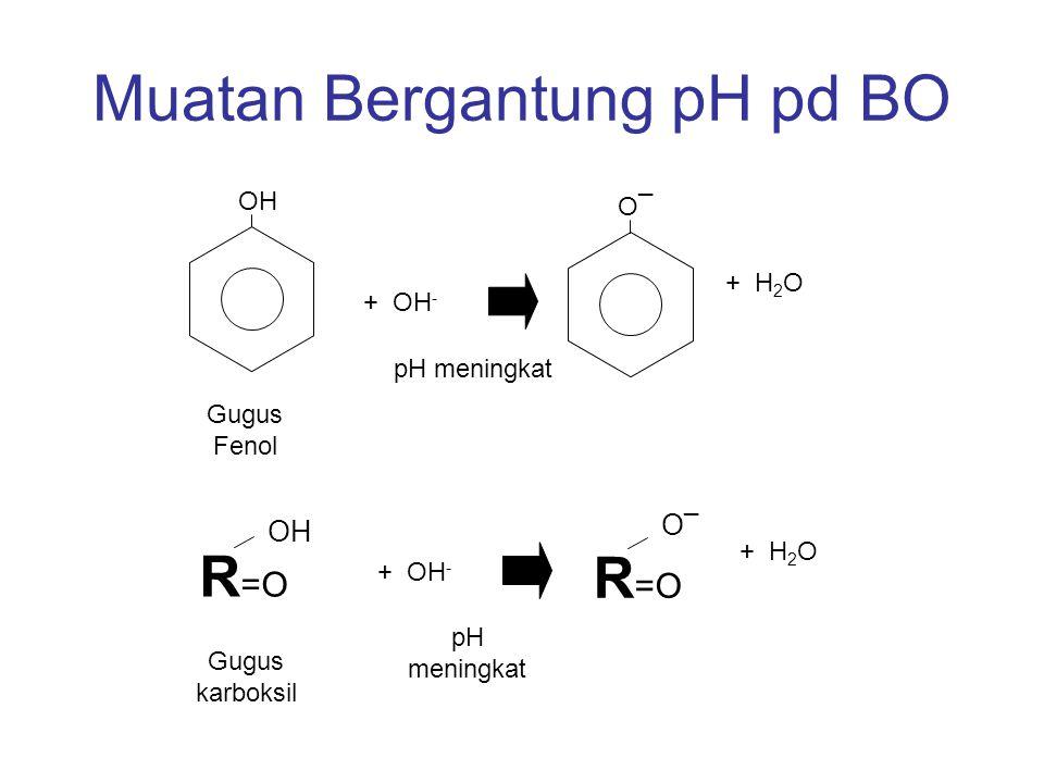 Muatan Bergantung pH pd BO
