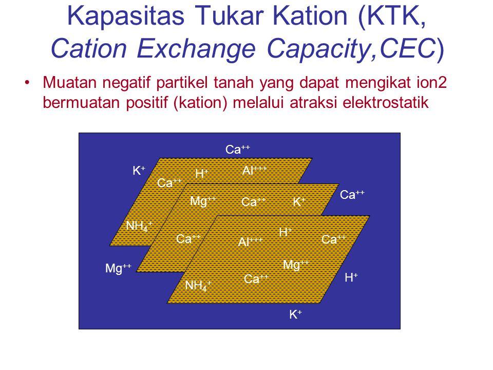 Kapasitas Tukar Kation (KTK, Cation Exchange Capacity,CEC)
