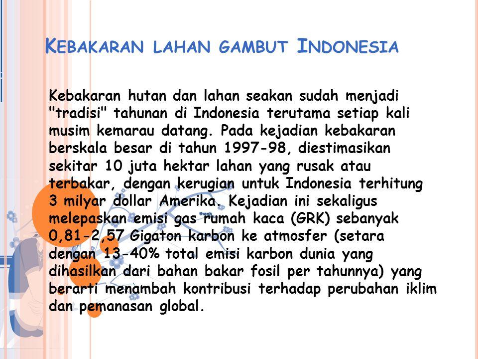 Kebakaran lahan gambut Indonesia