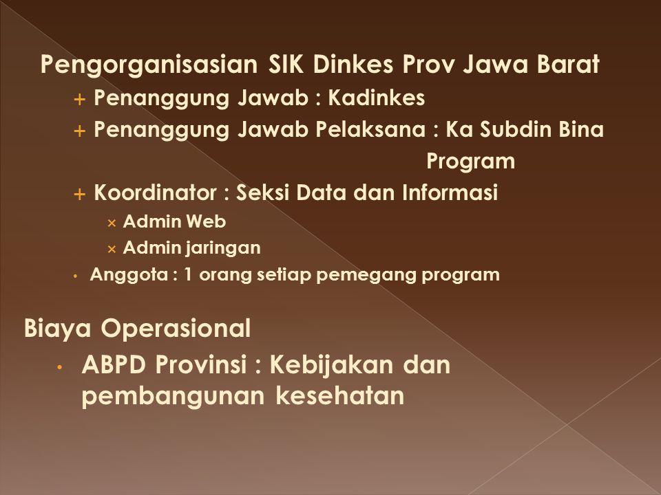 Pengorganisasian SIK Dinkes Prov Jawa Barat
