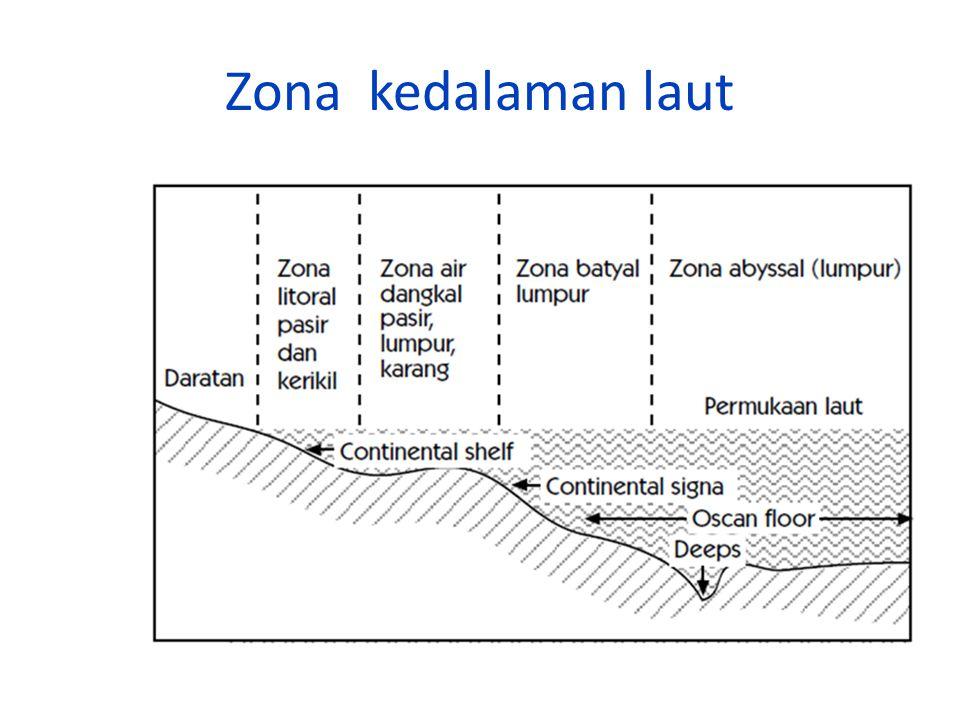 Zona kedalaman laut
