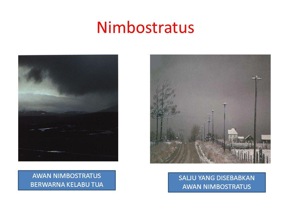 Nimbostratus AWAN NIMBOSTRATUS BERWARNA KELABU TUA