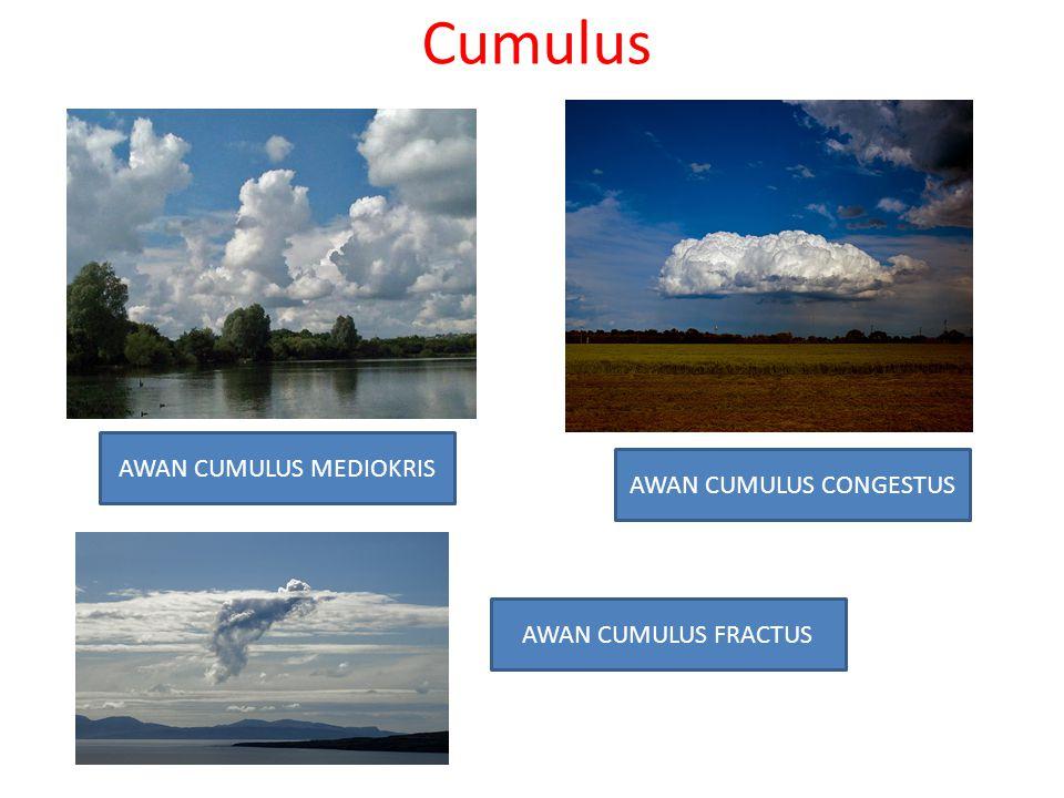 Cumulus AWAN CUMULUS MEDIOKRIS AWAN CUMULUS CONGESTUS