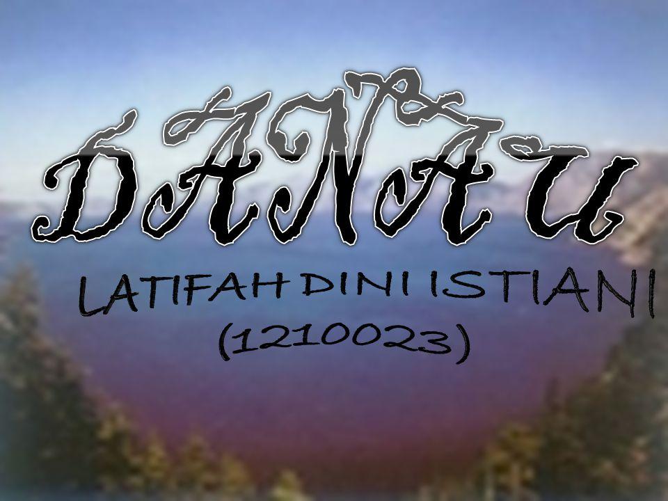 LATIFAH DINI ISTIANI (1210023)