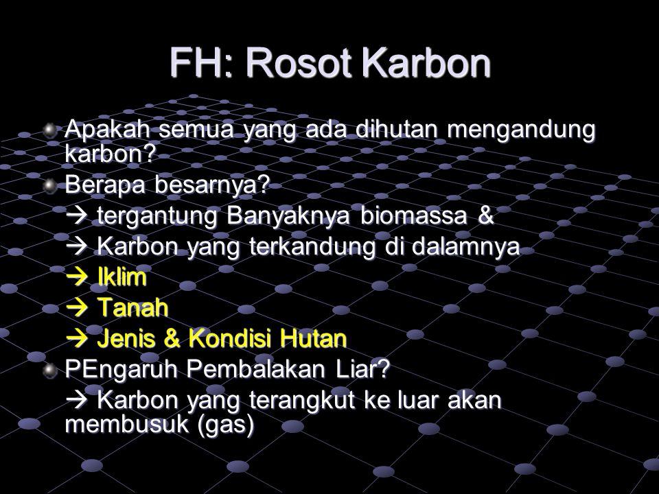 FH: Rosot Karbon Apakah semua yang ada dihutan mengandung karbon