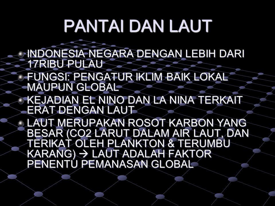 PANTAI DAN LAUT INDONESIA NEGARA DENGAN LEBIH DARI 17RIBU PULAU