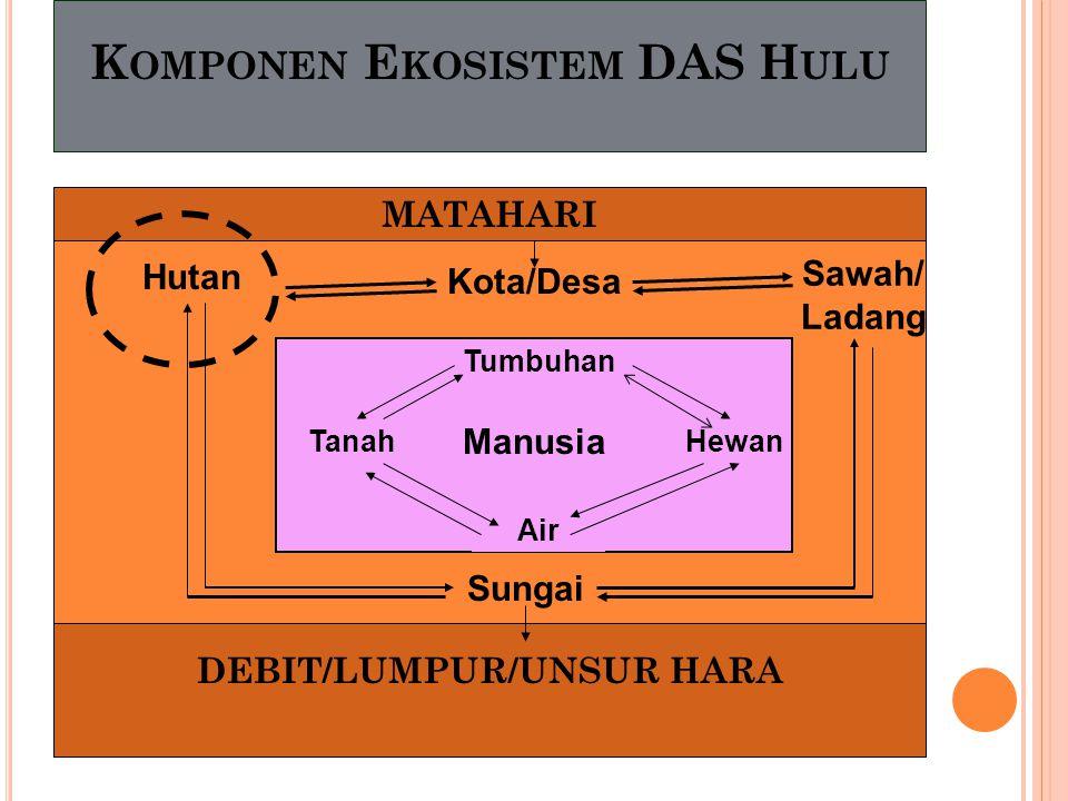 Komponen Ekosistem DAS Hulu