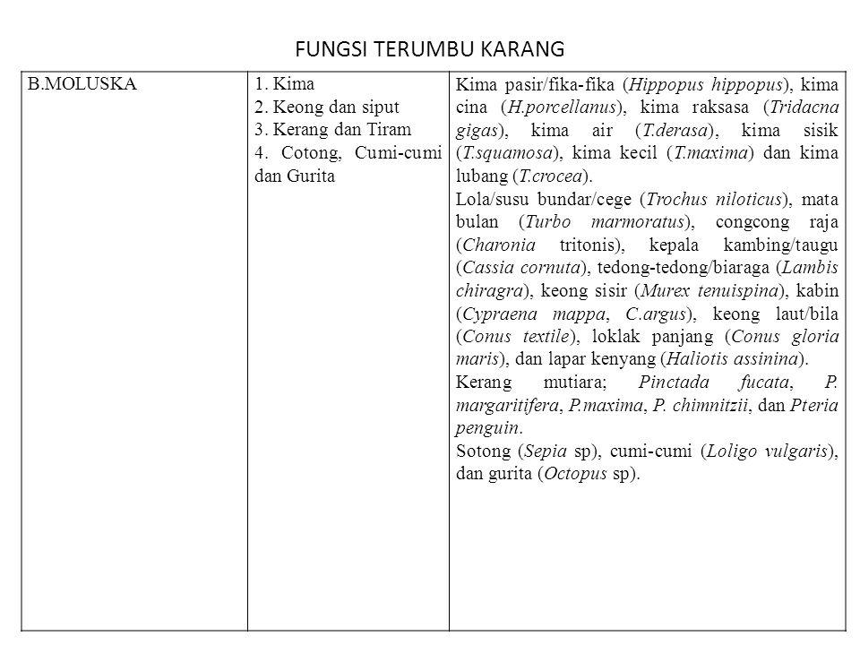 FUNGSI TERUMBU KARANG B.MOLUSKA 1. Kima 2. Keong dan siput