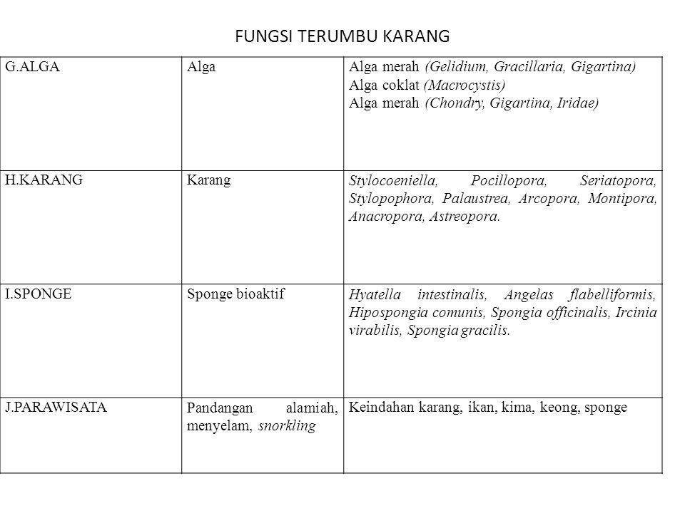 FUNGSI TERUMBU KARANG G.ALGA Alga