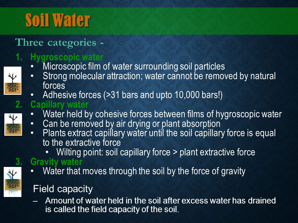 Soil Water Three categories - Hygroscopic water